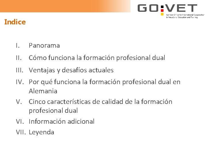 Indice I. Panorama II. Cómo funciona la formación profesional dual III. Ventajas y desafíos