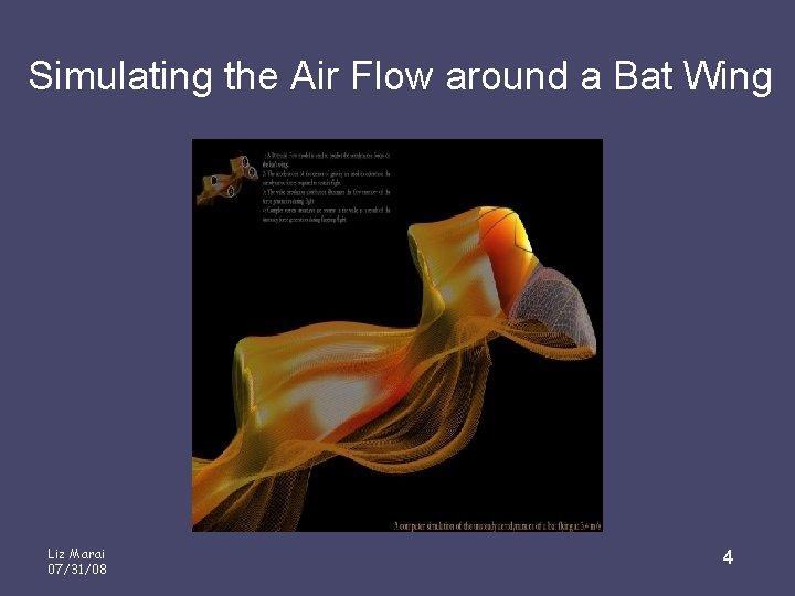 Simulating the Air Flow around a Bat Wing Liz Marai 07/31/08 4