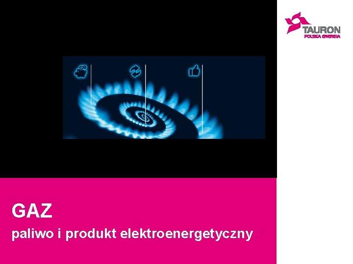 GAZ paliwo i produkt elektroenergetyczny