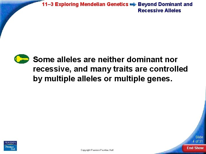 11– 3 Exploring Mendelian Genetics Beyond Dominant and Recessive Alleles Some alleles are neither