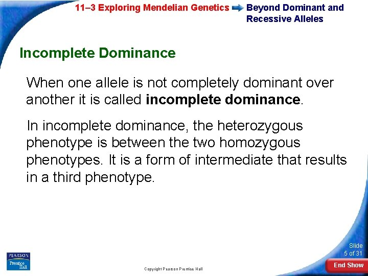 11– 3 Exploring Mendelian Genetics Beyond Dominant and Recessive Alleles Incomplete Dominance When one