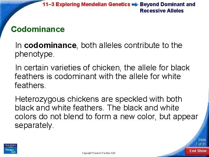 11– 3 Exploring Mendelian Genetics Beyond Dominant and Recessive Alleles Codominance In codominance, both