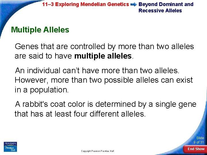 11– 3 Exploring Mendelian Genetics Beyond Dominant and Recessive Alleles Multiple Alleles Genes that
