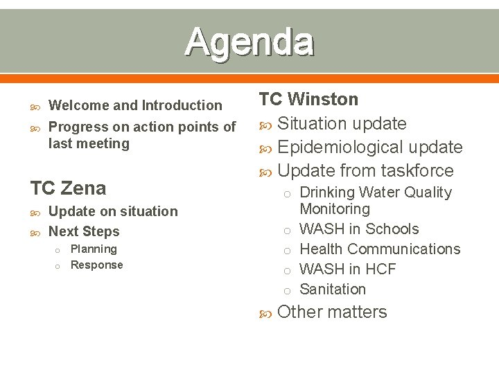 Agenda Welcome and Introduction Progress on action points of last meeting TC Zena TC