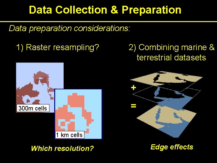 Data Collection & Preparation Data preparation considerations: 1) Raster resampling? 2) Combining marine &
