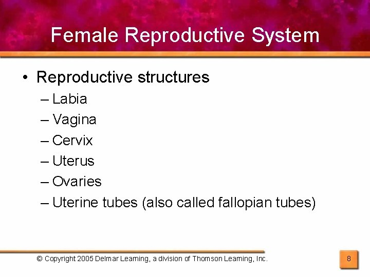 Female Reproductive System • Reproductive structures – Labia – Vagina – Cervix – Uterus