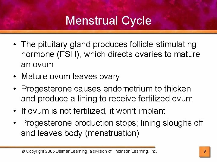 Menstrual Cycle • The pituitary gland produces follicle-stimulating hormone (FSH), which directs ovaries to