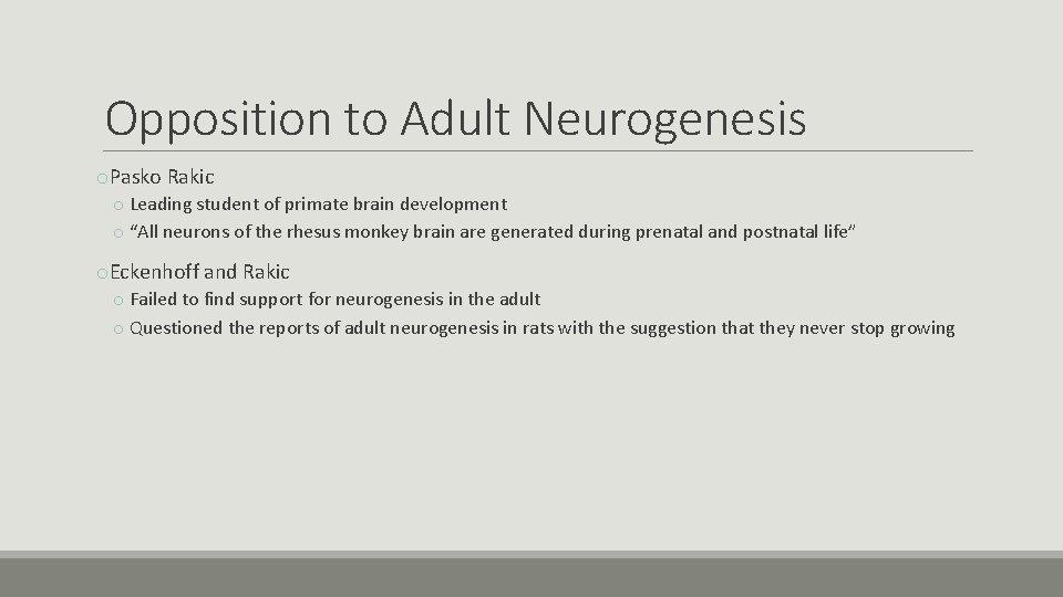 Opposition to Adult Neurogenesis o. Pasko Rakic o Leading student of primate brain development