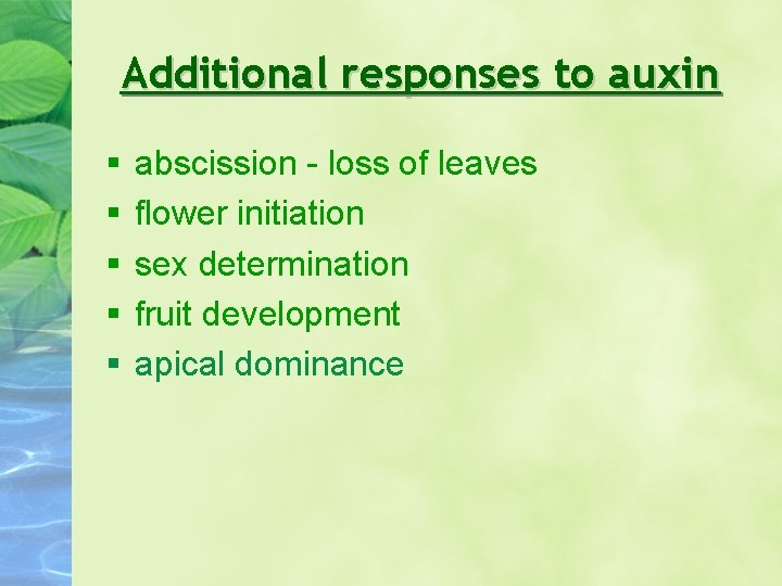 Additional responses to auxin abscission - loss of leaves flower initiation sex determination fruit