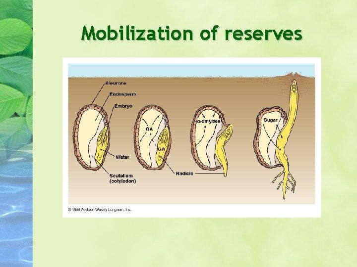 Mobilization of reserves