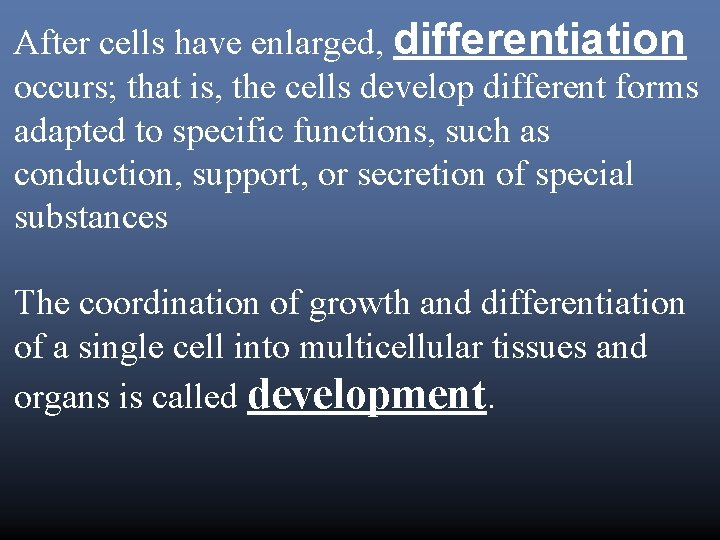 After cells have enlarged, differentiation occurs; that is, the cells develop different forms adapted