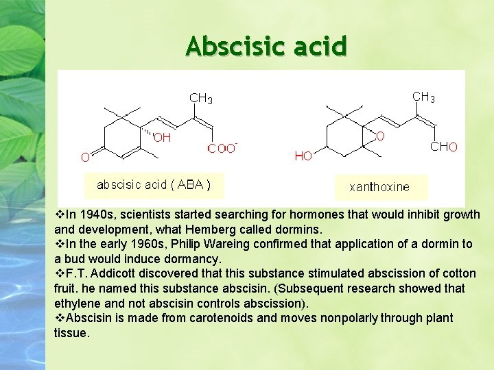 Abscisic acid In 1940 s, scientists started searching for hormones that would inhibit growth