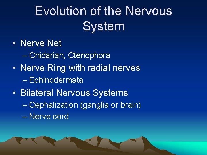 Evolution of the Nervous System • Nerve Net – Cnidarian, Ctenophora • Nerve Ring
