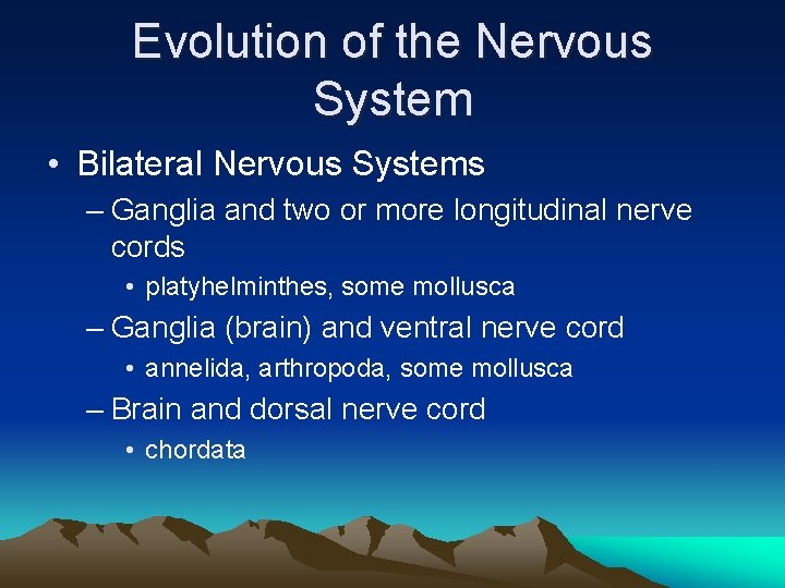 Evolution of the Nervous System • Bilateral Nervous Systems – Ganglia and two or