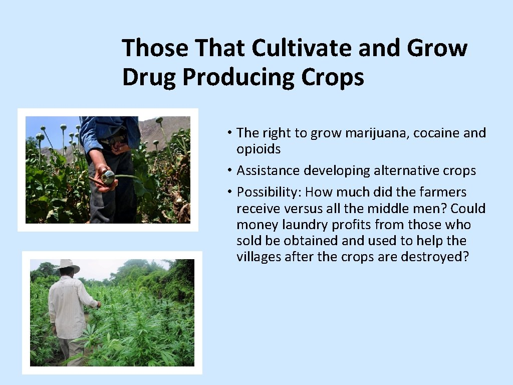 Those That Cultivate and Grow Drug Producing Crops • The right to grow marijuana,