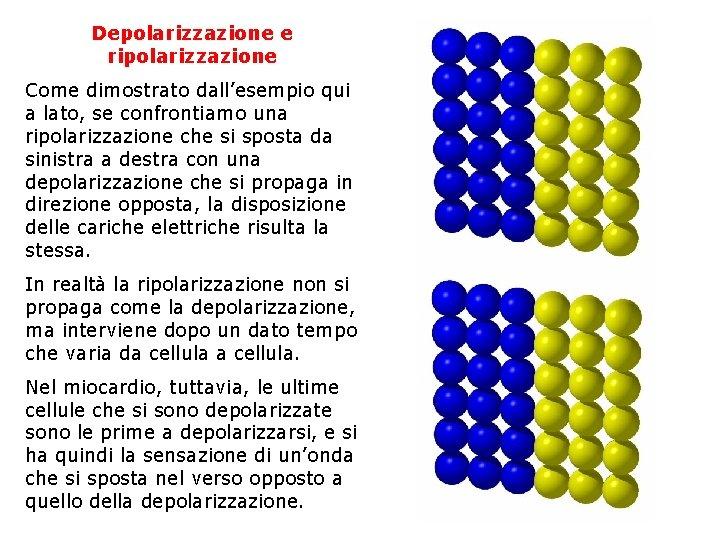 Depolarizzazione e ripolarizzazione Depolarizzazione e Come dimostrato dall'esempio qui a lato, se confrontiamo una
