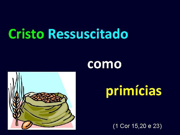Cristo Ressuscitado como primícias (1 Cor 15, 20 e 23)