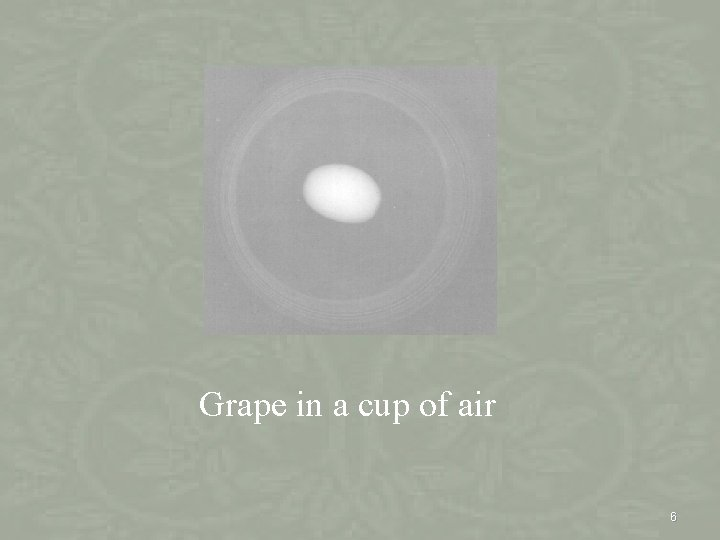 Grape in a cup of air 6