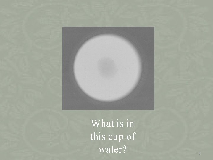 What is in this cup of water? 8