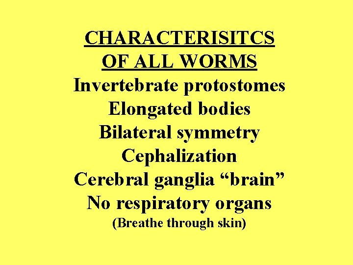 "CHARACTERISITCS OF ALL WORMS Invertebrate protostomes Elongated bodies Bilateral symmetry Cephalization Cerebral ganglia ""brain"""