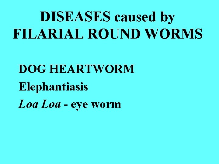 DISEASES caused by FILARIAL ROUND WORMS DOG HEARTWORM Elephantiasis Loa - eye worm