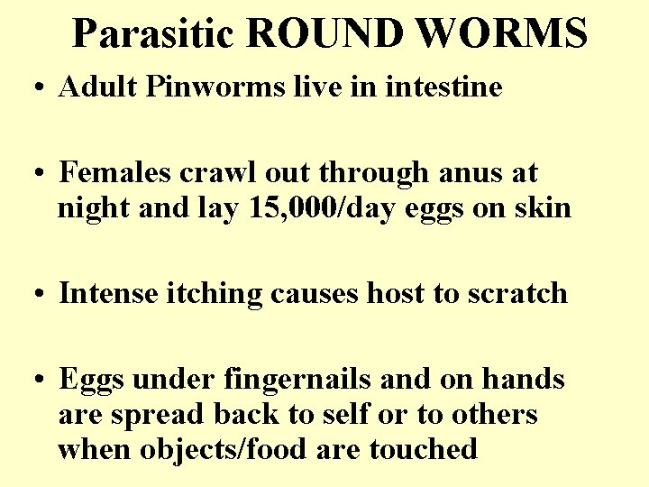 Parasitic ROUND WORMS • Adult Pinworms live in intestine • Females crawl out through
