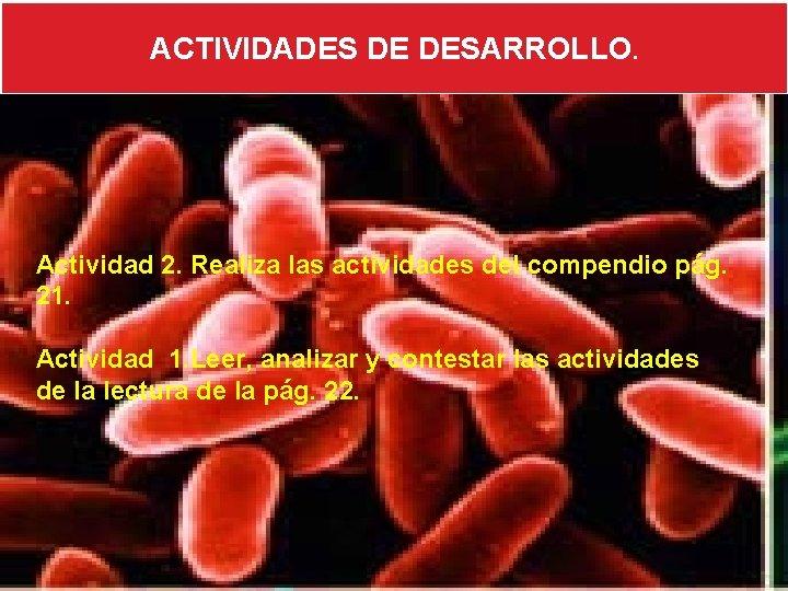ACTIVIDADES DE DESARROLLO. Actividad 2. Realiza las actividades del compendio pág. 21. Actividad 1.