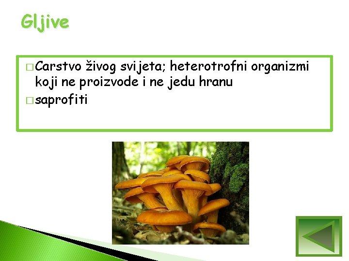 Gljive � Carstvo živog svijeta; heterotrofni organizmi koji ne proizvode i ne jedu hranu