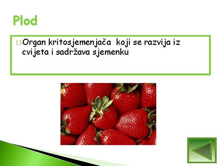 Plod � Organ kritosjemenjača koji se razvija iz cvijeta i sadržava sjemenku