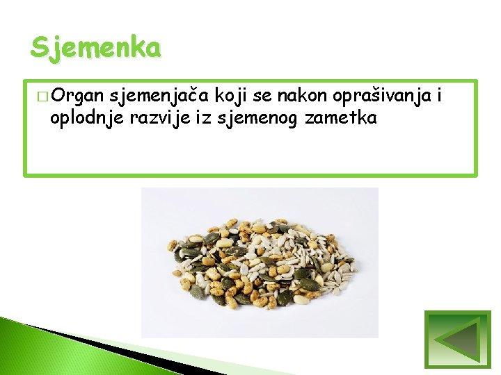 Sjemenka � Organ sjemenjača koji se nakon oprašivanja i oplodnje razvije iz sjemenog zametka