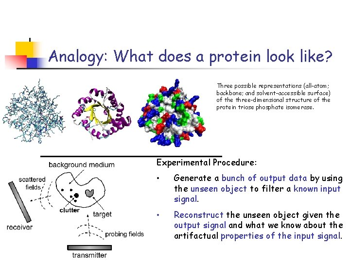 Analogy: What does a protein look like? Three possible representations (all-atom; backbone; and solvent-accessible
