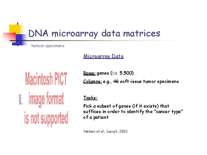 DNA microarray data matrices tumour specimens Microarray Data Rows: genes (ca. 5, 500) genes