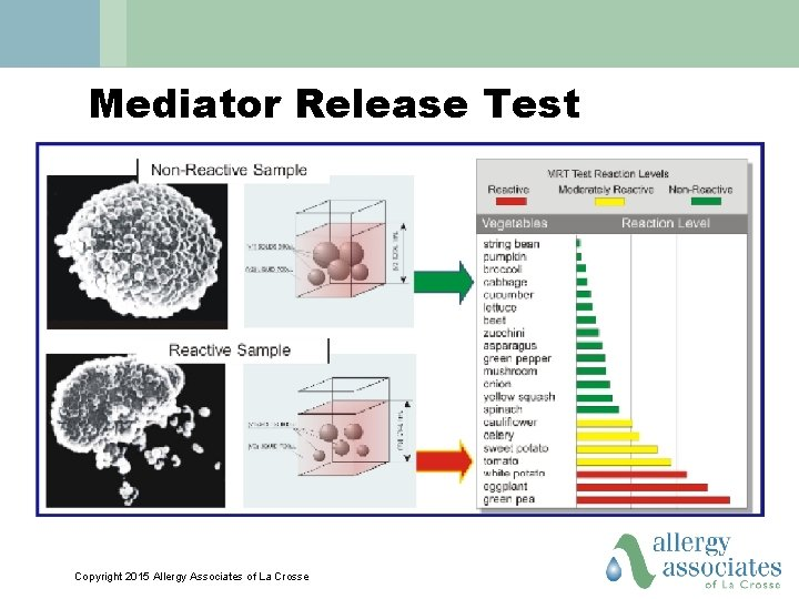Mediator Release Test Copyright 2015 Allergy Associates of La Crosse