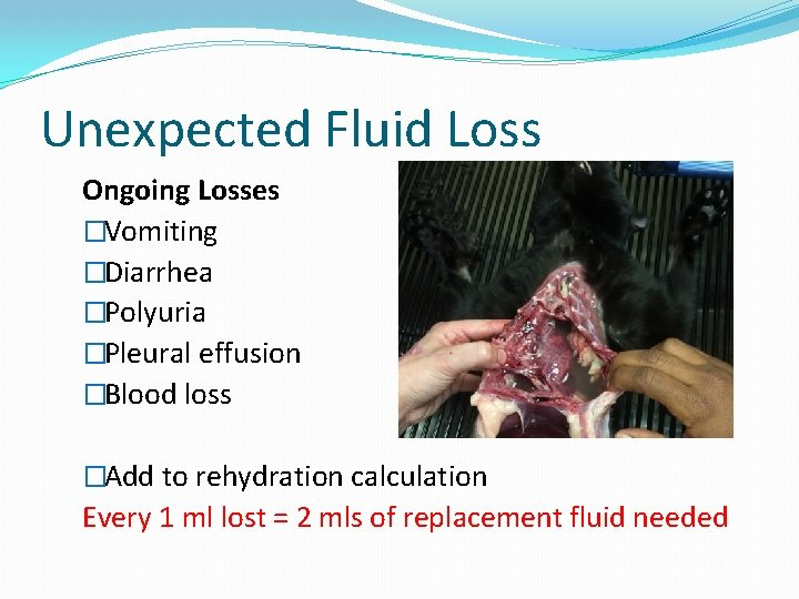 Unexpected Fluid Loss Ongoing Losses �Vomiting �Diarrhea �Polyuria �Pleural effusion �Blood loss �Add to