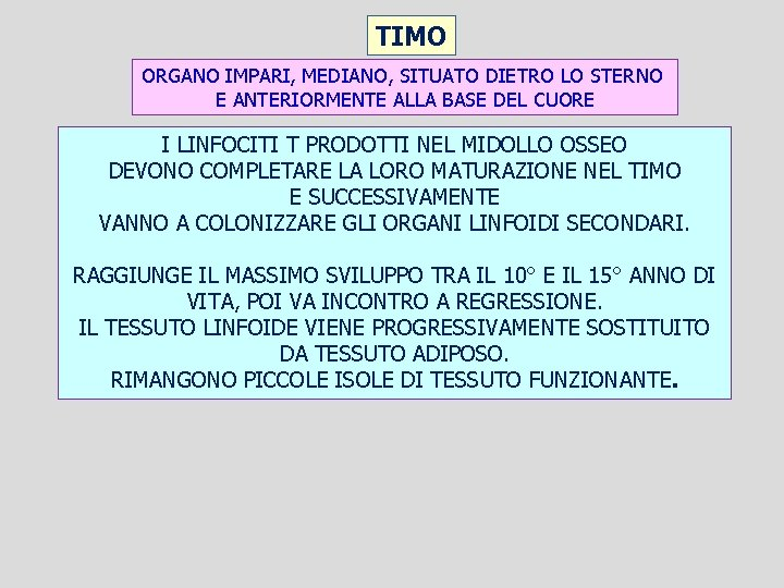 TIMO ORGANO IMPARI, MEDIANO, SITUATO DIETRO LO STERNO E ANTERIORMENTE ALLA BASE DEL CUORE