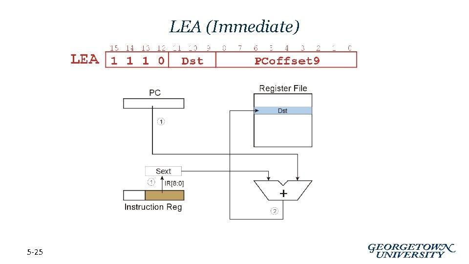 LEA (Immediate) 5 -25