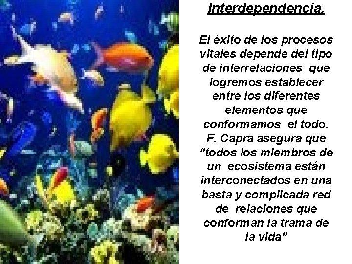 Interdependencia. El éxito de los procesos vitales depende del tipo de interrelaciones que logremos