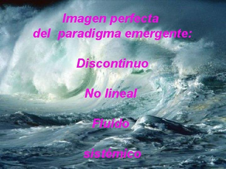 Imagen perfecta del paradigma emergente: Discontinuo No lineal Fluído sistémico