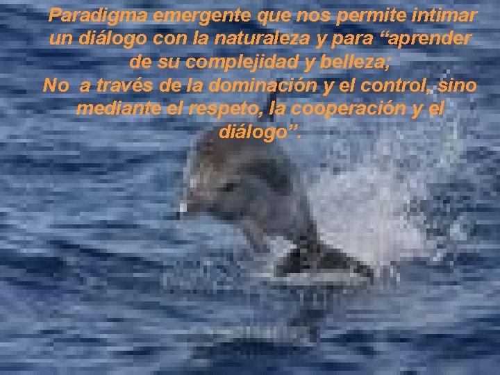 Paradigma emergente que nos permite intimar un diálogo con la naturaleza y para