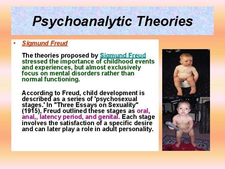 Psychoanalytic Theories • Sigmund Freud The theories proposed by Sigmund Freud stressed the importance