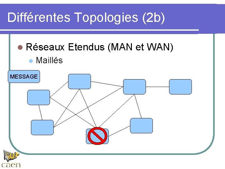 Différentes Topologies (2 b) l Réseaux l Maillés MESSAGE Etendus (MAN et WAN)
