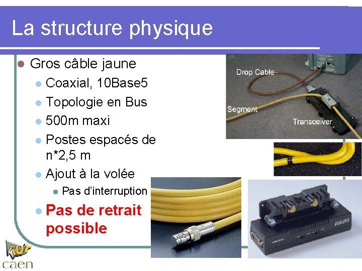 La structure physique l Gros câble jaune l l l Coaxial, 10 Base 5