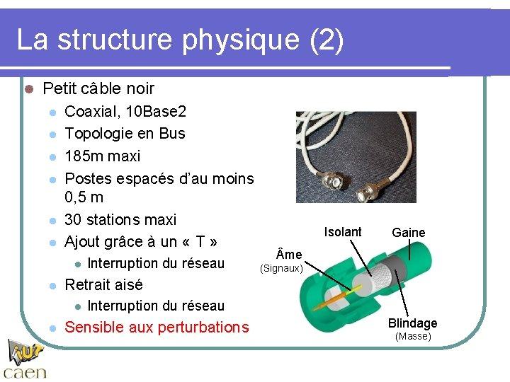 La structure physique (2) l Petit câble noir l l l Coaxial, 10 Base