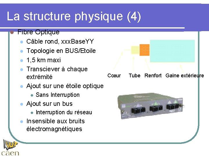 La structure physique (4) l Fibre Optique l l l Câble rond, xxx. Base.