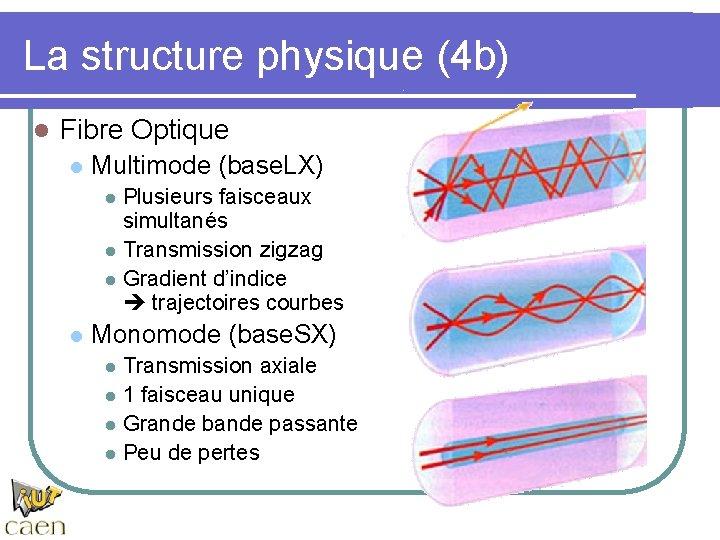 La structure physique (4 b) l Fibre Optique l Multimode (base. LX) l l