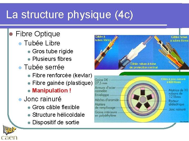 La structure physique (4 c) l Fibre Optique l Tubée Libre l l l