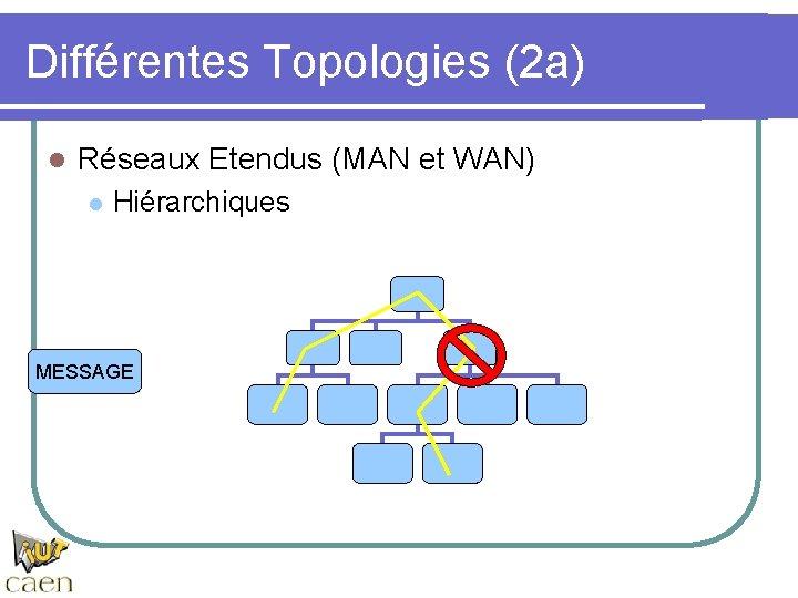 Différentes Topologies (2 a) l Réseaux Etendus (MAN et WAN) l Hiérarchiques MESSAGE