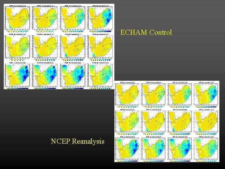ECHAM Control NCEP Reanalysis