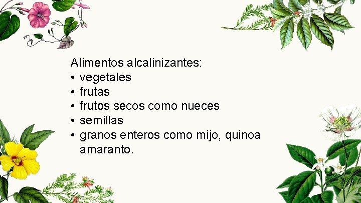 Alimentos alcalinizantes: • vegetales • frutas • frutos secos como nueces • semillas •