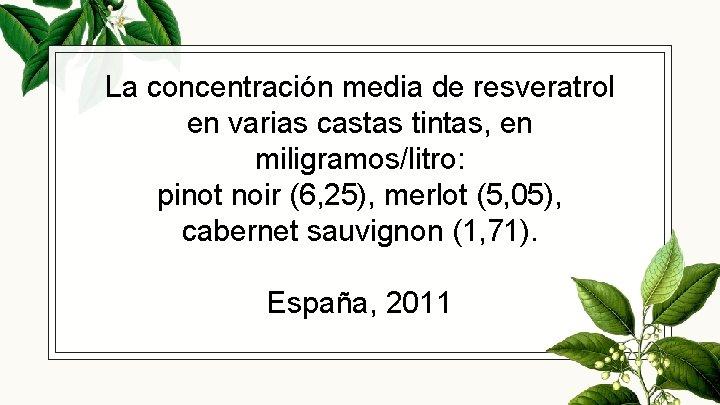 La concentración media de resveratrol en varias castas tintas, en miligramos/litro: pinot noir (6,